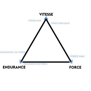 Pyramide forcr vitesse
